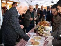 Muğla'nın Ula ilçesine bağlı Gökova havzasında Susam Ve Bal Şenliği