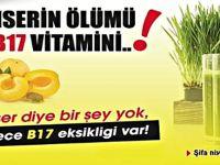 Kanserin En Büyük Nedeni B17 Vitamini Eksikliğidir işte B17 Vitamini bulunan besinler