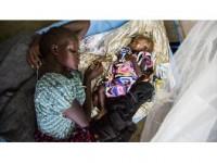 Fao'dan Somali İçin 236 Milyon Dolarlık Yardım Çağrısı
